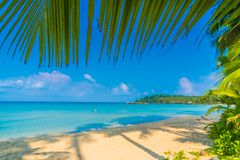 Beautiful tropical beach and sea Stock Photography