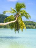 Beautiful tropical beach in Seychelles Stock Images