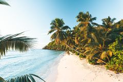 Tropical Beach in Seychelles stock photos