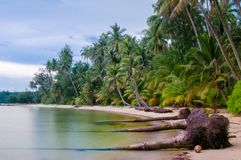 Beautiful tropical beach in Thailand. With long exposure effect Stock Photography