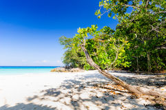 Beautiful tropical beach, white sand and blue sky background. Royalty Free Stock Photos