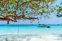 Beautiful tropical beach, white sand, blue sky background with t. Ravel yacht boat and Tree branch foreground. Seascape or Landscape at similan island, andaman Stock Images