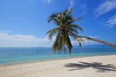 Beautiful tropical beach white sand coconut tree with blue sky o Stock Image