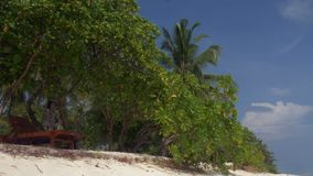 Beautiful tropical beach with white sand and palm trees in Maldives. 4k stock video