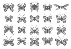 Beautiful Tropical butterflies set. Vector isolated elements on white background. royalty free illustration