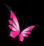 Beautiful tropical butterfly Stock Images