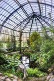 Beautiful tropical  exhibition in Palmengarten in Frankfurt Stock Image