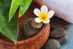 Beautiful tropical flower and spa set for healthy massage.  stock image