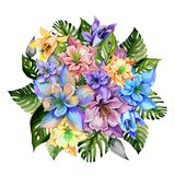 Beautiful tropical flowers bright aquilegia and monstera leaves. Round bunch of columbine flowers and exotic leaves. Beautiful tropical flowers bright aquilegia Royalty Free Stock Photography