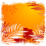 Beautiful tropical frame Royalty Free Stock Image