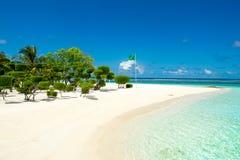 Beautiful tropical garden Royalty Free Stock Image