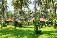 Beautiful tropical garden on Java in Indonesia Stock Photo
