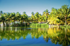Beautiful tropical garden with lake in carribean resort, Dominic Royalty Free Stock Images