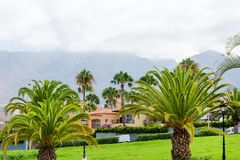 Beautiful tropical garden with palm trees near the mountains. Beautiful tropical garden with palm trees near the mountains Royalty Free Stock Photography