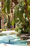 Beautiful tropical garden with a pool with a fountain. In sunny day Stock Photos