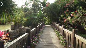 Beautiful tropical garden on site Resort Intime Sanya 5 unfocused time lapse stock footage video stock video footage