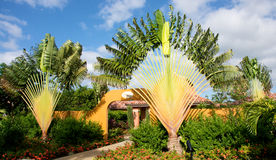 Beautiful tropical gardens Stock Photos