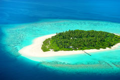 Beautiful tropical island from above. Maldives, Carribean or Sou Stock Photos