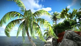 Beautiful tropical island stock video