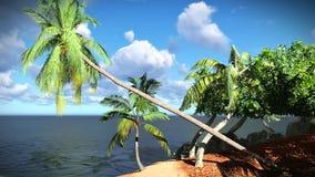 Beautiful tropical island stock footage