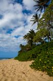 Beautiful tropical Kaanapali Beach in Maui Hawaii. Beautiful, warm tropical white sands of Kaanapali Beach in Maui, Hawaii. A fabulous destination for vacation royalty free stock photo
