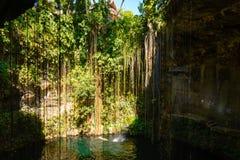 Beautiful tropical lake Royalty Free Stock Photo