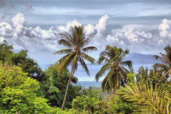 Beautiful tropical landscape Stock Image