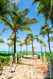Beautiful tropical landscape on the exotic resort Stock Images
