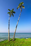 Beautiful tropical landscape with ocean beach Royalty Free Stock Photos