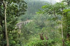 Beautiful tropical landscape with old stone bridge in perspective, tall trees and lush on green hills.  Royalty Free Stock Images