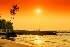 Beautiful tropical landscape in orange tones. Royalty Free Stock Image
