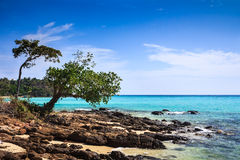 Beautiful tropical landscape of Phi Phi Don Island Royalty Free Stock Photo
