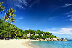Beautiful tropical landscape. Samui Island, Thailand Royalty Free Stock Photography
