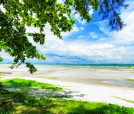Beautiful tropical landscape. Samui Island, Thailand Stock Image