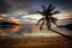 Beautiful tropical landscape Royalty Free Stock Image