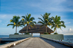 Beautiful tropical landscape with wooden hut on bridge with palm trees near the ocean at Maldives Stock Photo