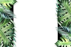 Beautiful tropical leaves border frame. Monstera, palm. Watercolor painting. White paper on black backdrop. royalty free illustration