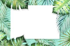 Beautiful tropical leaves border frame. Monstera, palm. Watercolor painting. White paper on blue backdrop. stock illustration