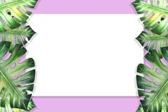 Beautiful tropical leaves border frame. Monstera, palm. Watercolor painting. White paper on purple backdrop. Exotic plant drawing. Natural print. Botanical vector illustration