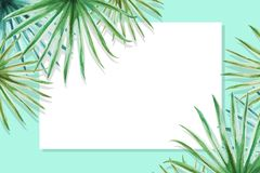 Beautiful tropical leaves border frame. Palm. Watercolor painting. White paper on blue backdrop. Exotic plant drawing. Natural print. Botanical composition royalty free illustration