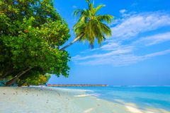 Beautiful tropical Maldives island luxury resort Stock Images