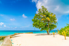 Beautiful tropical Maldives island with white sandy beach and se Stock Photography