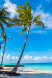Beautiful tropical Maldives island, white sandy beach and sea  w Stock Photography