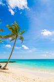 Beautiful tropical Maldives island, white sandy beach and sea  w Stock Image