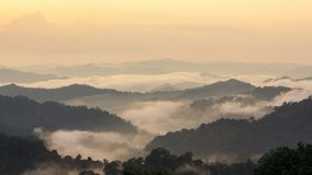 Beautiful tropical mountain mist in rain forest. Stock Photo