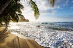 Coast in Costa Rica royalty free stock photos