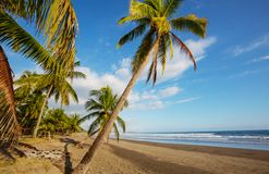 Coast in Costa Rica. Beautiful tropical Pacific Ocean coast in Costa Rica royalty free stock image