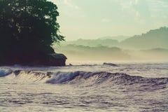 Coast in Costa Rica stock image