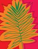 Beautiful Tropical Palm Tree Leaf Silhouette Background.  Stock Photography