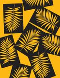 Beautiful Tropical Palm Tree Leaf Silhouette Background. Vector Illustration. Stock Image
